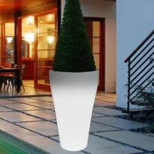<strong>CompassCo</strong> Bon Décor Curve Illuminated Pot Planter