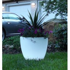 <strong>CompassCo</strong> Bon Décor Bowl Illuminated Pot Planter