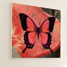 Metamorphosis Butterfly #2 Framed Graphic Art