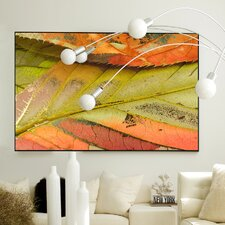 Nature Crisp Framed Graphic Art
