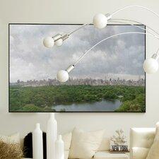 Landscape Central Park Framed Graphic Art