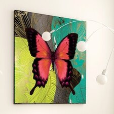 Metamorphosis Modern Butterfly Framed Graphic Art