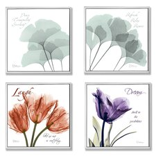 Home Décor Squares X-Ray Floral Inspiration 4 Piece Graphic Art Set (Set of 4)