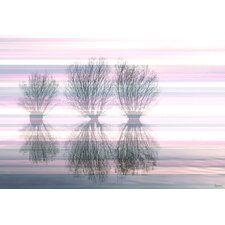 <strong>Parvez Taj</strong> Three Trees Canvas Art