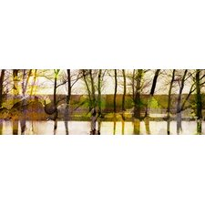 Lake Trees Canvas Art