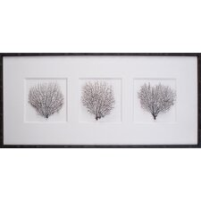 "17.25"" Tryptich Sea Fans Art"