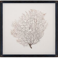 <strong>Mirror Image Home</strong> Salvaged Sea Fan Art