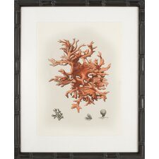 Red Coral III Framed Graphic Art