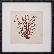 Mini Red Coral VIII Framed Graphic Art