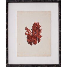 Mini Red Coral V Framed Graphic Art