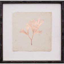 Copper Leaf Seaweed III Framed Graphic Art