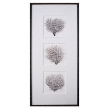Tryptich Sea Fans Framed Graphic Art
