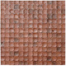 Coconut Textured Mosaic in Brown Bliss