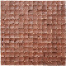 "16-1/2"" x 16-1/2"" Coconut Mosaic Tile in Brown Luster"