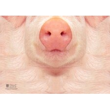 <strong>Molla Space, Inc.</strong> Pig Sniffing Notebook