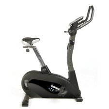 Deluxe Upright Bike