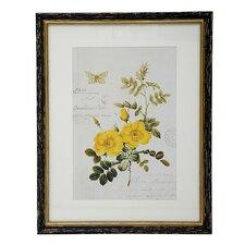 Botanic Framed Graphic Art