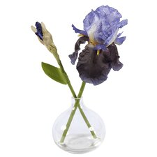 Glass Vase with Iris