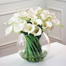 Calla Lily in Glass Vase