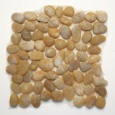 Decorative Random Sized Pebble Unpolished Mosaic in Honed Turkish Amber