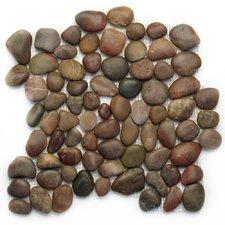 Decorative Random Sized Pebble Polished Mosaic in Agate