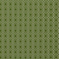 Palm Canyon Fabric - Lime