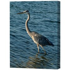 Heron Limited Edition Canvas - Scott J. Menaul