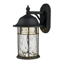 Lapuente 1 Light Outdoor Wall Lantern