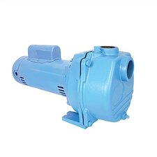 2 HP Lawn Sprinkler Pump