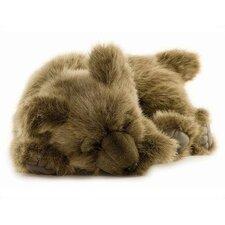 Cuddly Bear Cub Stuffed Animals Collection