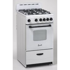 Electric Gas Range