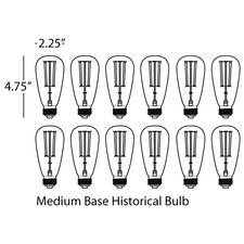 Candelaria Light Bulb