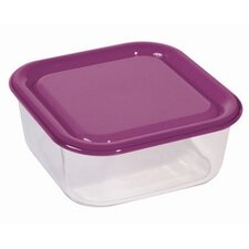 Igloo Food Storage Container