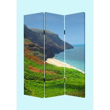 Hawaiian Coast Screen