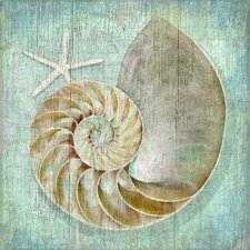 Nautilus Wall Art by Suzanne Nicoll Graphic Art Plaque
