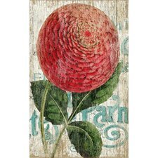 Suzanne Nicoll Zinnia Red Graphic Art Plaque