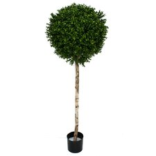Artificial Boxwood Ball Topiary in Pot