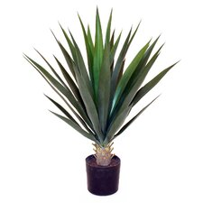 Artificial Yucca Desk Top Plant