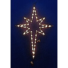<strong>Holiday Lighting Specialists</strong> Small Star of Bethlehem