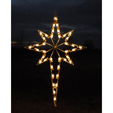 <strong>Holiday Lighting Specialists</strong> Star of Bethlehem Light
