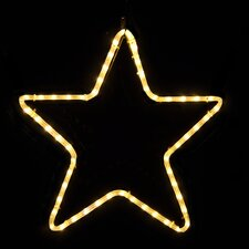 <strong>Holiday Lighting Specialists</strong> Small 5 Point Star in LED Lights