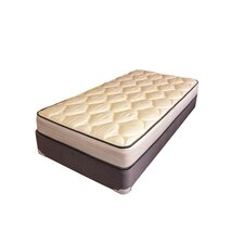 "Spine Support 8"" Alina Foam Mattress"