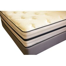 "Spine Support 13.5"" Zenith Memory Foam Mattress"