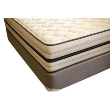 "Spine Support 12.5"" Zenith Memory Foam Mattress"