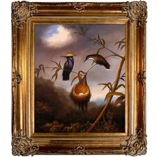 Heade Black Breasted Plovercrest by Johnson Framed Original Painting