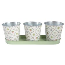 Botanicae 3 Piece Round Pot Planter Set