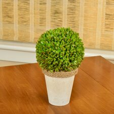 Faux Boxwood Ball Topiary