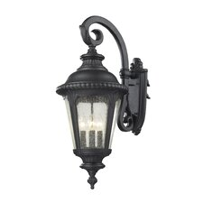 Medow 4 Light Outdoor Wall Lantern