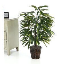 Deluxe 4' Artificial Potted Natural Mango Tree in Green