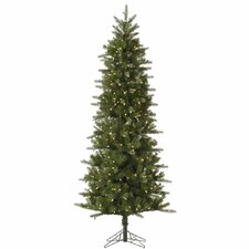 Carolina Pencil 8' Green Spruce Artificial Christmas Tree with 500 Dura-Lit Clear Lights